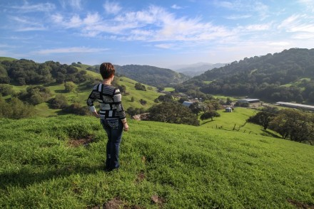 Laurie Figone looking out over her familys ranch just outside of Petaluma