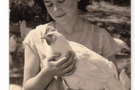 Jewish Chicken Farmer