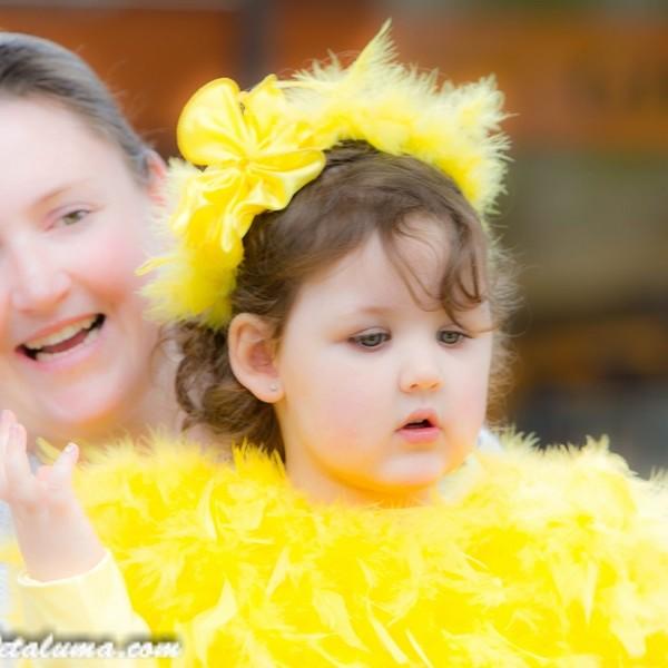 Don't Miss Petaluma Ca Butter & Egg Days Button Launch on Tuesday March 29th - Positively Petaluma